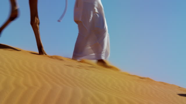 vídeos de stock, filmes e b-roll de camels being led handlers across desert sand dunes - adereço de cabeça