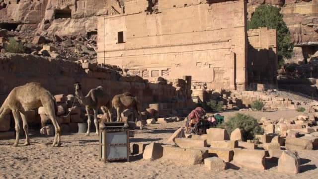 camels in front of ancient ruins in petra, jordan - 6th century bc stock videos and b-roll footage