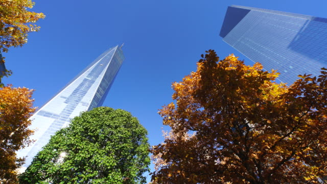 pan camera captures autumnal leaves trees and one world trade center and other skyscrapers. - september 11 2001 attacks stock videos & royalty-free footage