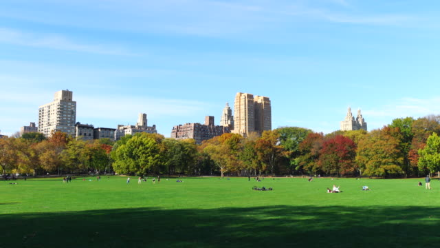 Camera captures Central Park West Residents behind autumnal color trees at Sheep Meadow Central Park.
