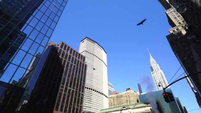 Camera captures cityscape around the 42nd street at Midtown Manhattan New York City. Steam rises to the air and pigeons fly among the buildings.