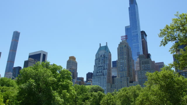 pan camera captures fresh green trees and manhattan skyscrapers from central park. - clear sky stock videos & royalty-free footage
