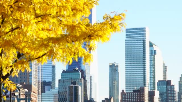 vídeos de stock, filmes e b-roll de camera captures lower manhattan skyscrapers behind autumn color trees from hudson river park new york. - distrito financeiro de manhattan