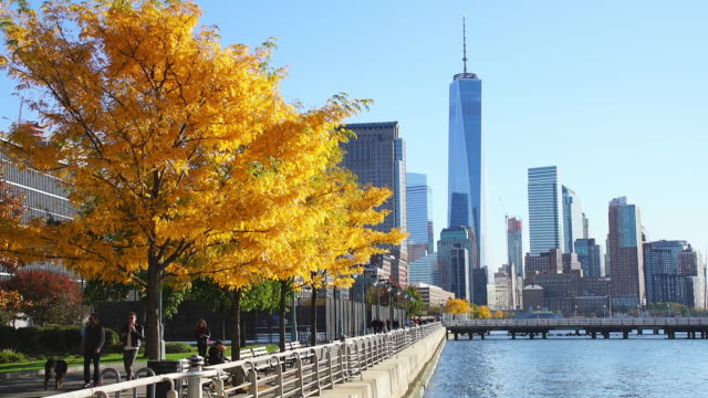 Camera captures One World Trade Center and other skyscraper behind autumnal leaves trees. People walk down the promenade beside Hudson River.