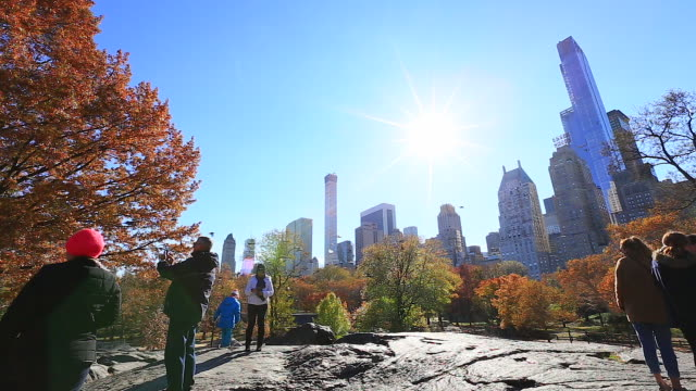 Camera captures people and the flying pigeons from rocky mountain at autumn Central Park. Sun shines above Manhattan skyscrapers at the sky.