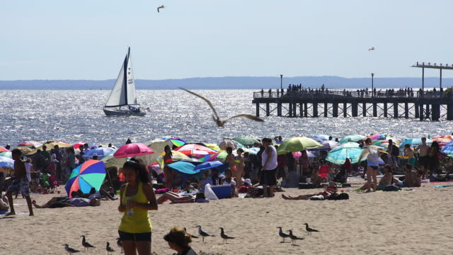 PAN Camera captures people who are bathing in the sun at crowded shiny Coney Island Beach. There are many colorful beach parasols on the beach.