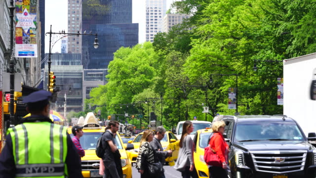 camera captures the central park south traffic and people along rows of fresh green trees at central park new york. - 警察点の映像素材/bロール