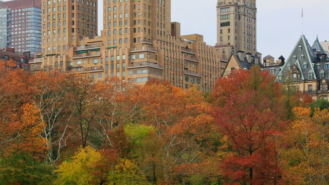 pan camera captures the central park west residences surrounded by autumn color trees. - upper west side manhattan stock videos and b-roll footage