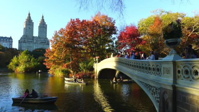 PAN Camera captures the people on the Bow Bridge at The Lake, which are surrounded by autumnal color trees at sunset.People row the boat on the lake.