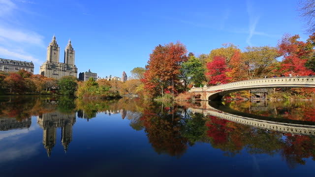 pan camera captures the reflections of people on the bow bridge and autumn color trees in the lake. central park west residents and the san remo can be seen behind. - remo stock videos and b-roll footage