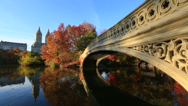 camera captures the reflections of people on the bow bridge and autumn color trees in the lake at sunset. central park west residents and the san remo can be seen behind. - remo stock videos and b-roll footage
