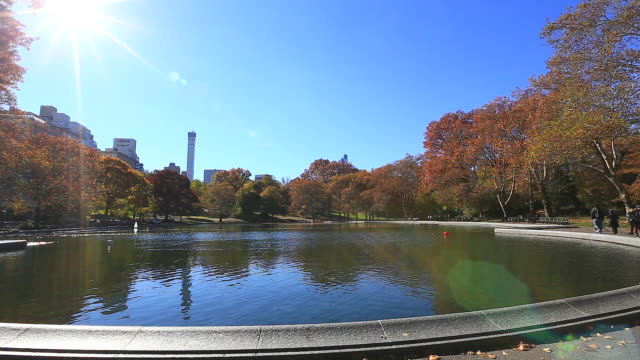 vídeos de stock, filmes e b-roll de pan camera captures the sun and autumn color trees reflected in the pond at central park. central park east residences can be seen behind. - parélio