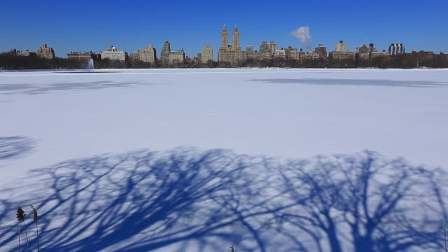 tu td camera captures tree shadow on the frozen reservoir and central park west residences can be seen behind.reservoir is completely frozen for cold temperature which is covered by snow. - central park reservoir stock videos and b-roll footage