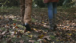 Camera follows a man and woman walking with their dog in the woods