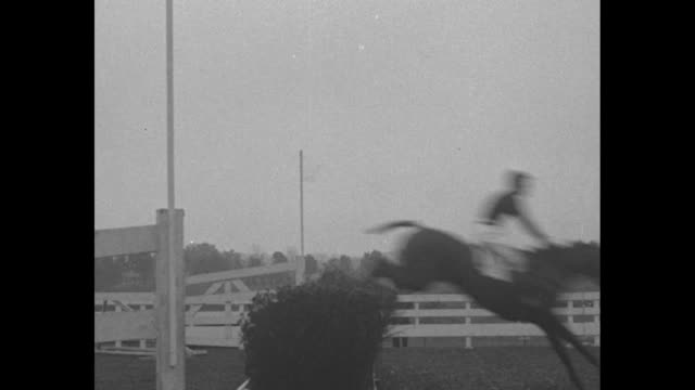 ls camera follows horses as they run course and jump hurdles during steeplechase race / horses jump hurdle then one horse knock hurdle down and falls... - hurdling horse racing stock videos and b-roll footage