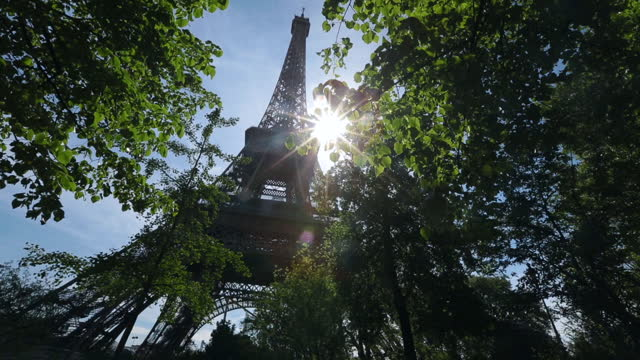Camera POV looks up at Eiffel Tower as sunlight shines through trees.