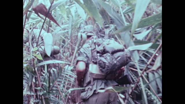 Camera moves along and follows soldiers from the 101st Airborne as they wind through tall elephant grass on a mountain above the A Shau Valley