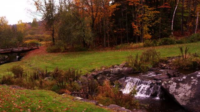 Camera pans across churning creek to reaveal wooden bridge.