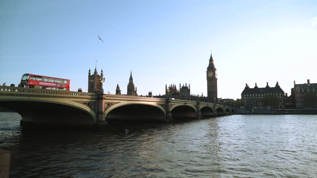 vídeos de stock e filmes b-roll de camera pans as seagulls fly over the thames towards westminster bridge, the palace of westminster, and elizabeth tower. - big ben