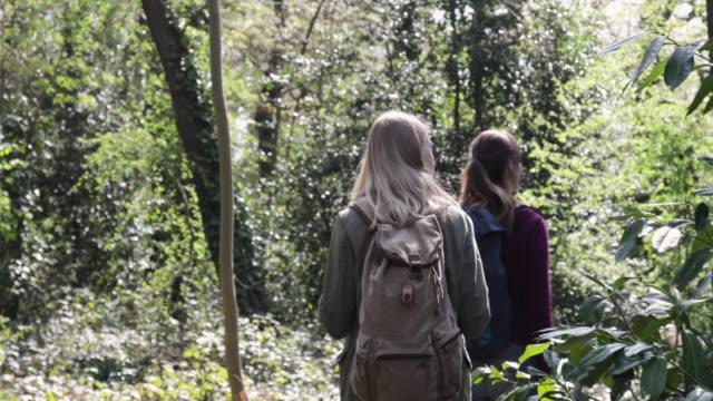 Camera stabilizator shot following two women walking in a forest.