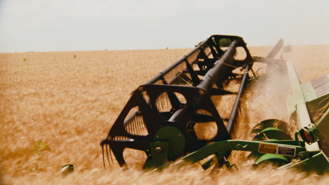 camera tracks with combine tractor harvesting wheat in a field. - nebraska stock-videos und b-roll-filmmaterial