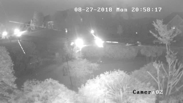 vídeos de stock, filmes e b-roll de cctv camera view of spider web and car driving at night - fauna silvestre