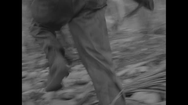 cameraman walking through jungle followed by us marines / marine running forward and falling to ground behind tree / marine firing rifle, cameramen... - guam stock videos & royalty-free footage