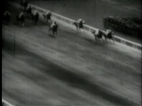 cameramen filming race / horses racing - medium group of animals stock videos & royalty-free footage