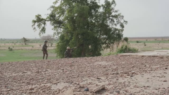 cameroon army on patrol as boko haram attempt to infiltrate cameroon from nigeria. clip includes: cameroon army on patrol, fire fight with boko haram... - conflict stock videos & royalty-free footage