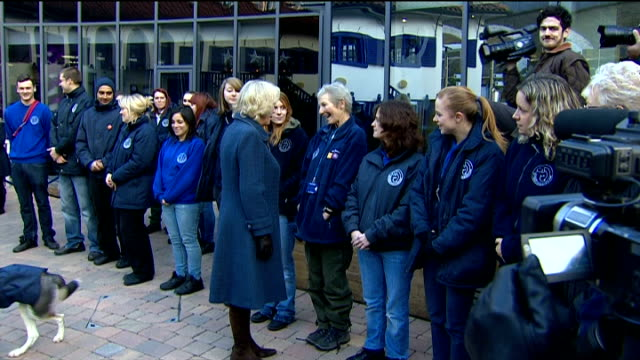 stockvideo's en b-roll-footage met camilla duchess of cornwall visits battersea cats and dogs home camilla visit camilla shaking hands with volunteers / paul o'grady holding puppy in... - paul o'grady