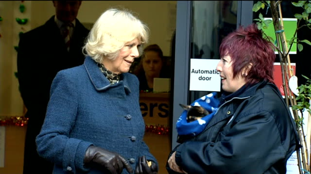 camilla duchess of cornwall visits battersea cats and dogs home camilla visit dogs outside home / paul o'grady leaving with small dog wrapped in... - paul o'grady stock-videos und b-roll-filmmaterial
