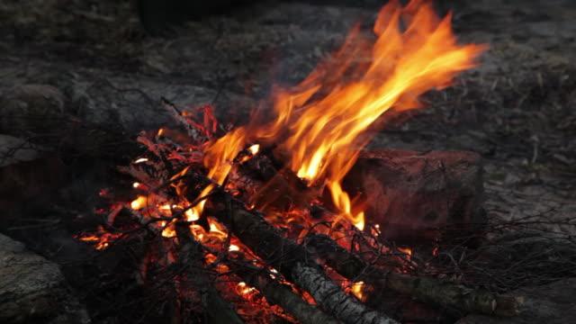 ms tu camp fire by side of lake / copenhagen, sjaelland, denmark - bonfire stock videos & royalty-free footage