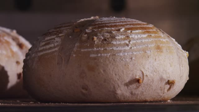 a campagne being baked and rising in the oven - bread stock videos & royalty-free footage