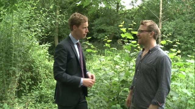 campaign to create greater london national park city; camley street natural park: daniel rave-ellison interview sot - it is completely possible - greater london stock videos & royalty-free footage