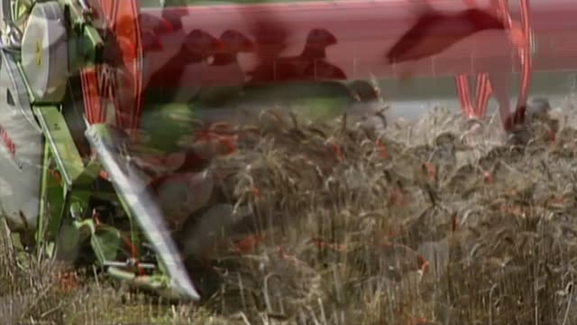 campaigners cry foul over government nature plan delays; r10080906 / location unknown: combine harvester towards through wheat field wheat crop being... - farne islands stock videos & royalty-free footage