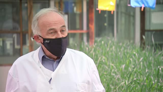 stockvideo's en b-roll-footage met campaigners warn brexit could lead to new generation of genetically modified crops; england: norfolk: norwich: john innes centre: int various shots... - new not politics