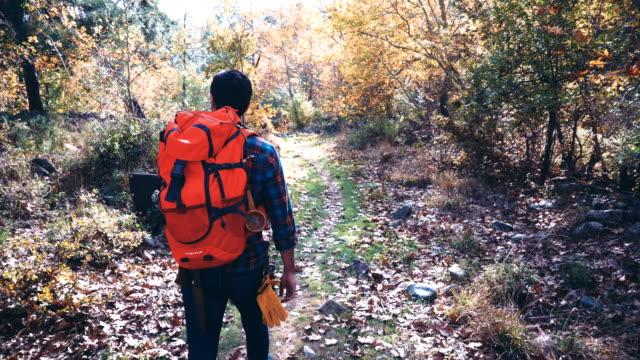 キャンピングカー男ハイキングや森林エリアを探索 - 外乗点の映像素材/bロール