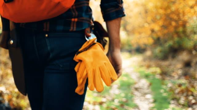 キャンピングカー男ハイキングや色補正 - 森林エリアを探索 - バックパック点の映像素材/bロール