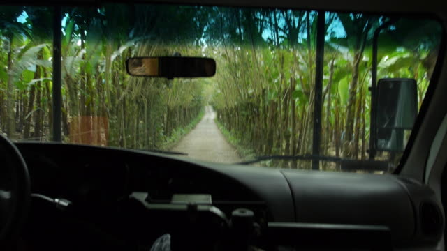 a camper van towing kayaks down a dirt road on the way to the river kayaking location. - 引く点の映像素材/bロール