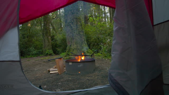 campfire at camping ground in forest - tent stock videos and b-roll footage
