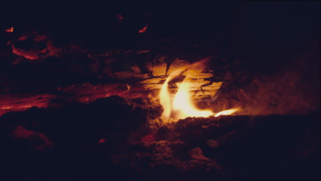 夜のキャンプファイアー - カバノキ点の映像素材/bロール