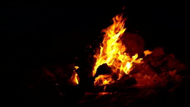 vídeos de stock e filmes b-roll de campfire at night - fogueira de acampamento