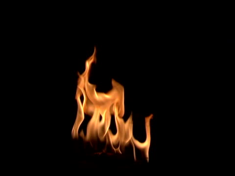campfire burning flames background - warming up stock videos and b-roll footage