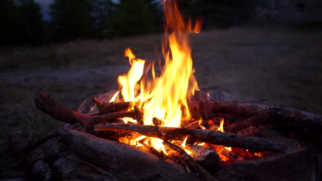 campfire burning - campfire stock videos & royalty-free footage