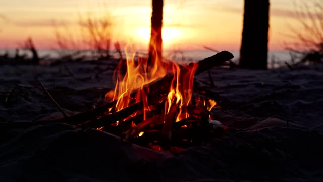 campfire on beach - camping stock videos & royalty-free footage