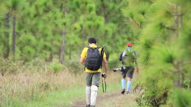 camping freundschaft zu fuß backpacker und abenteuerreisen camp wald entspannen konzept - zuschnappen stock-videos und b-roll-filmmaterial