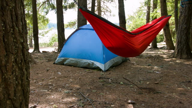 Camping grond in forest