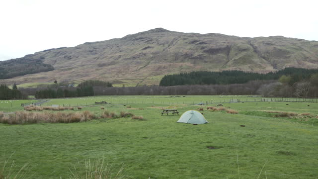 camping on a mountain meadow - camping stock videos & royalty-free footage