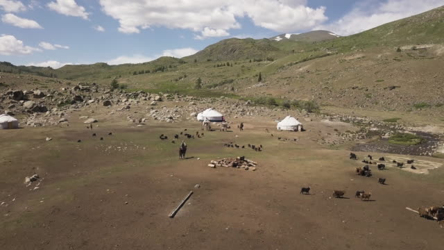 camping site in tavan bogd in mongolia - independent mongolia stock videos & royalty-free footage