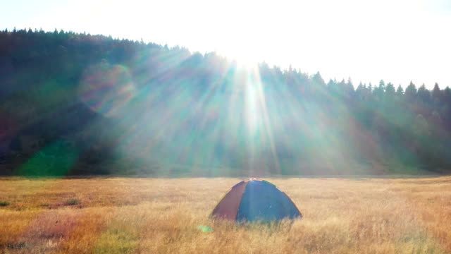 camping tent - coniferous stock videos & royalty-free footage